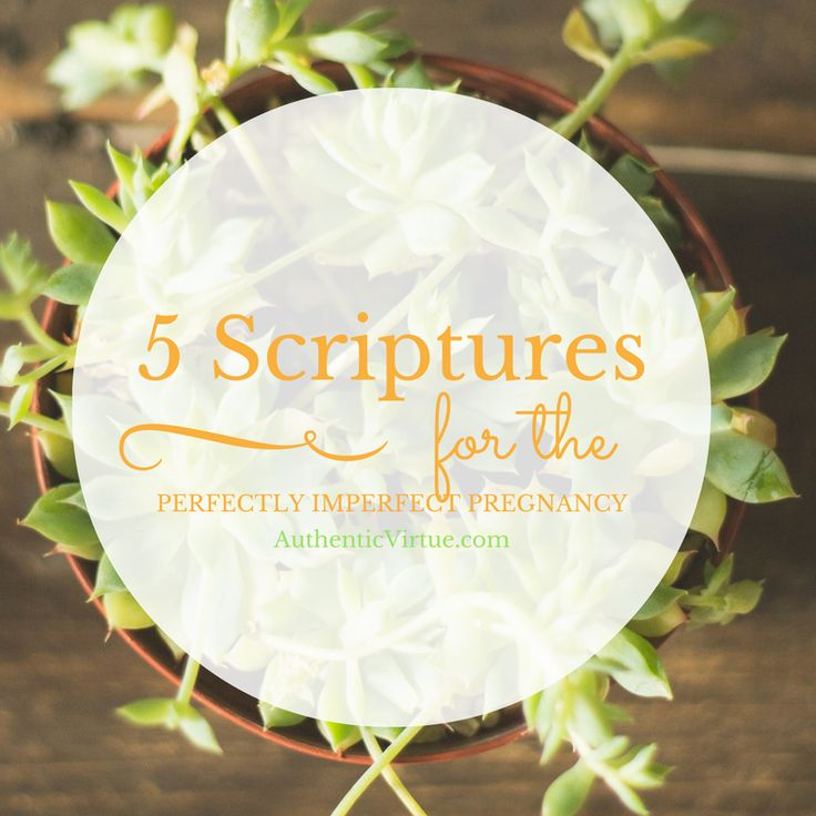 5 Scriptures for the High-Risk Pregnancy @ AuthenticVirtue.com