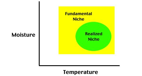 9(g) Concept of Ecological Niche