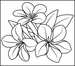 Tropical Flower - Online Coloring Page