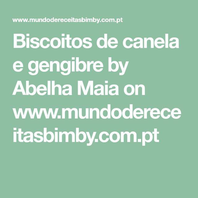 Biscoitos de canela e gengibre by Abelha Maia on www.mundodereceitasbimby.com.pt