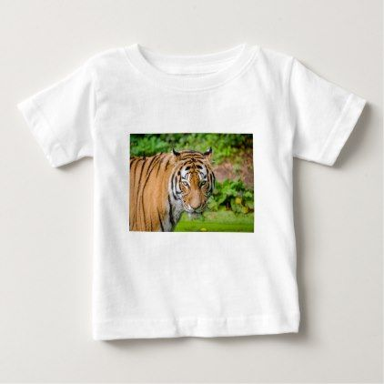 Bengal Tiger on Green Grass Baby T-Shirt - cat cats kitten kitty pet love pussy