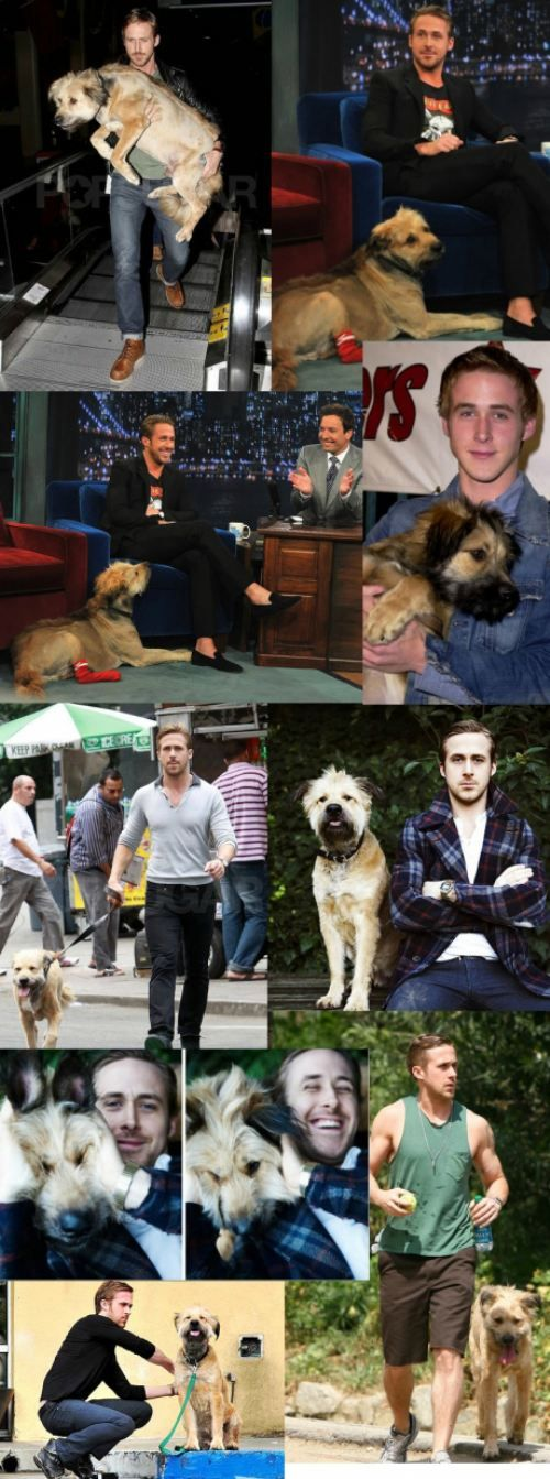 Ryan Gosling and his dog (collective sighs from women everywhere)