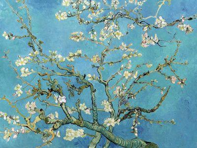 Vincent van Gogh - Çiçekli Badem Dalları, San Remy, c.1890, Almond Branches in Bloom, San Remy, c.1890 - Poster - AllPosters.com.tr'de.