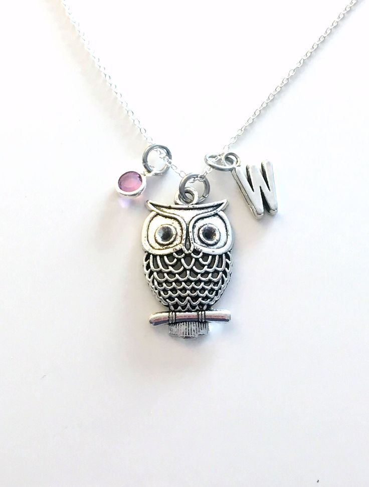 Owl Necklace, Owl Bird Jewelry, Personalized Gift Love Custom Theme Party Birthday Present Large Statement Long Short Chain her Vintage Look by aJoyfulSurprise on Etsy