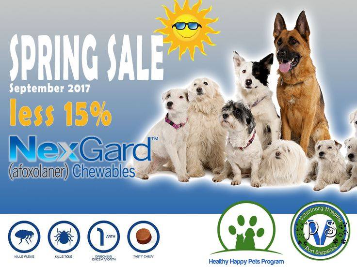 NexGard Spring Sale - less 15% this September For this month only, the prices of NexGard is less 15% on all sizes. NexGardis an over the counter,chewable tabletcontainingAfoxolanerand is available from veterinarians. It will kill ticks and fleas for one month and is available for dogs of all sizes over the age of 8 weeks.  http://www.vet-portshepstone.co.za/announcements/nexgard-spring-sale-less-15-this-september/