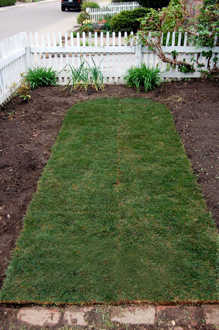 How To Lay Sod A Step By Step Guide To The Perfect Lawn How To Lay Sod Lawn And Landscape Sod Grass