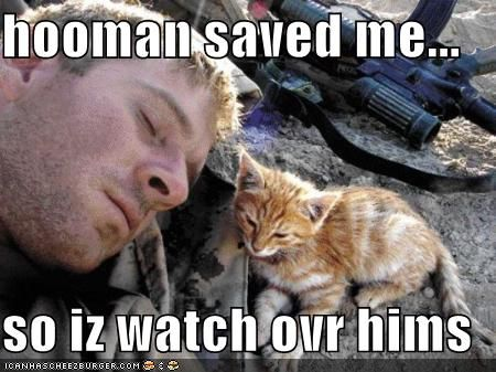 Soldier with kitten