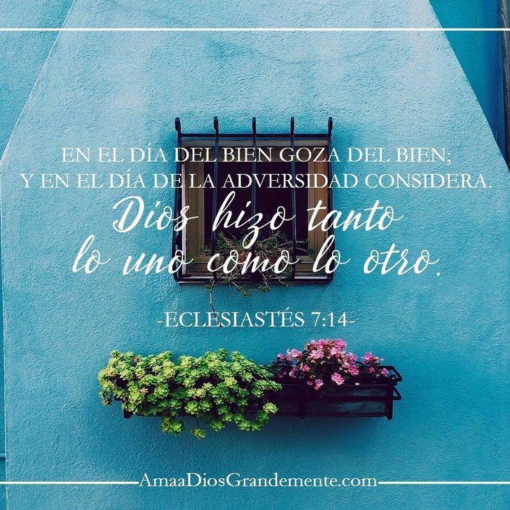Eclesiastés- Encontrando el Verdadero Propósito de nuestra Vida - Semana 5 / Miercoles Lectura - Eclesiastés 7: 14-18 Devocional -Eclesiastés 7:14 #ADG #AmaADiosGrandemente #LGG #Eclesiastes #EstudioBiblicoMujeres #EstudioBiblico #EstudioBiblicoOnline #encontrandoelverdaderopropósito #Mujerconpropósito #Jesús #mujersabia #ComunidadADG