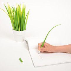Grass Leaf Pens  http://colossalshop.com/products/grass-leaf-pen