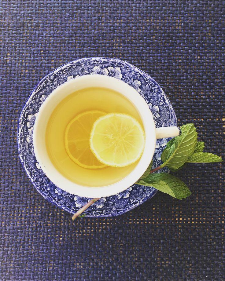 Lemony Cape Moondance Buchu Tea
