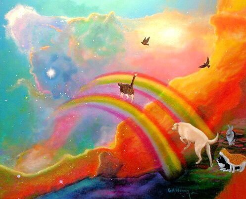 All the pets and animals are crossing the rainbow bridge to the other side