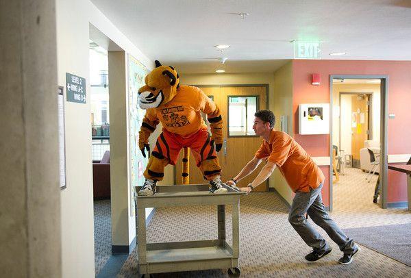Idaho State Bengals Basketball | Move In Day 8/22/12 | ~*Idaho State University (ISU)*~ | Pinterest