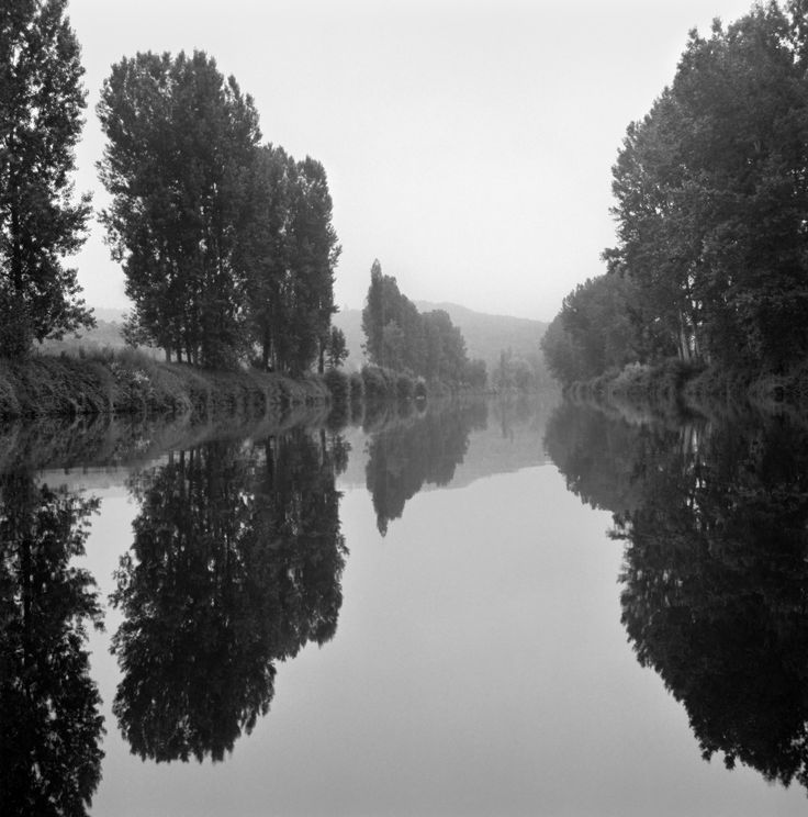 Tree Lined Canal, 2011 by Sally Gall