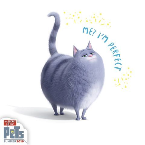 Chloe's New Year's Resolution: What about perfection do you not understand? | The Secret Life of Pets | In Theaters July 8