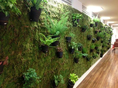 モスの壁:庭と寄せ植え