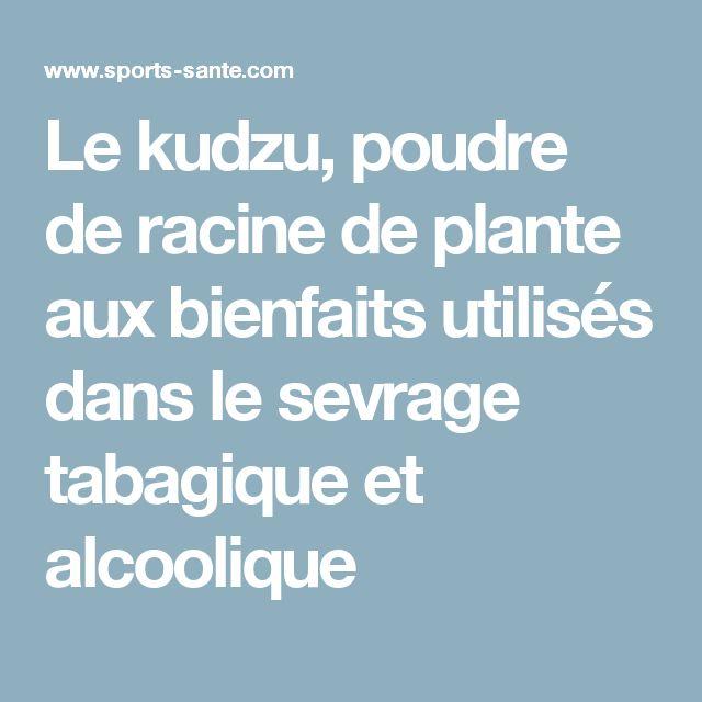 Le kudzu, poudre de racine de plante aux bienfaits utilisés dans le sevrage tabagique et alcoolique