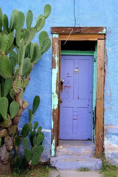 Tucson home exterior - Blue stucco and Purple front door - Cactus - Desert
