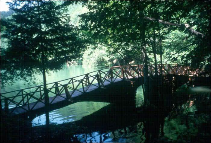 Ülkemizdeki Milli Parklar ,bol görselli,detaylı ders notu..