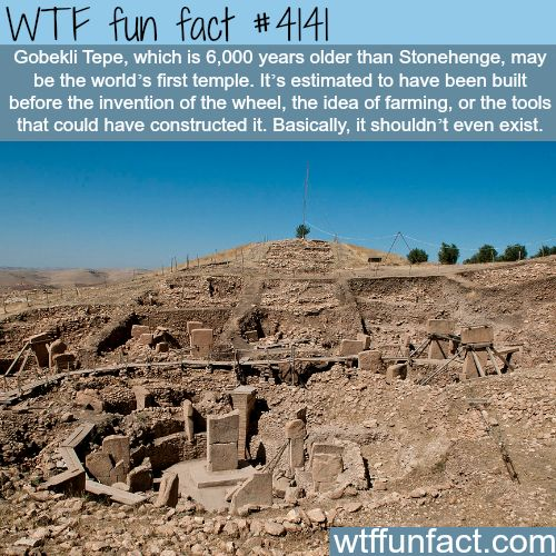 Things that history can not explain –  WTF fun facts – Lanelle Angelucci