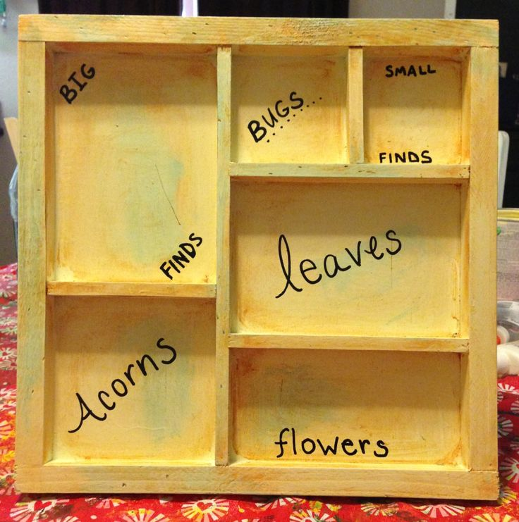 Wood sorting tray for outdoor classroom activities.