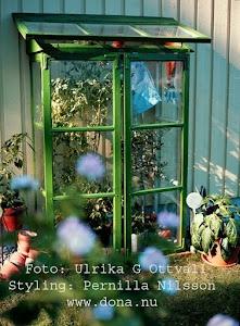 Bygg växthus av gamla fönster
