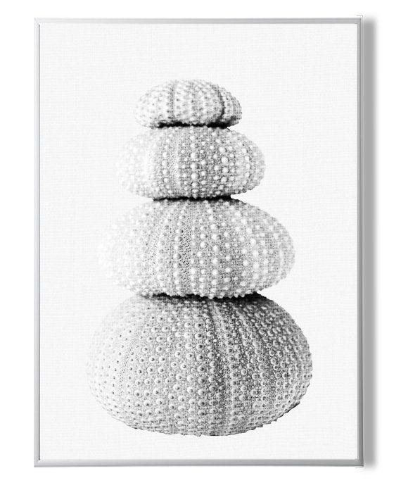 Sea UrchinsCoastal Wall Decor Coastal Decor от YourPrintsShop