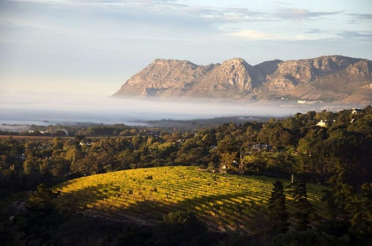 Wine pairs well with beautiful views in South Africa! Cheers to that.