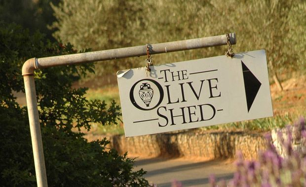 The Olive Shed project began in 2000 with the establishment of a 4 ha olive grove. In 2001, just 500 bottles were produced from purchased fruit, and sold out within two weeks. In 2002, a more substantial 18 000 litres were produced, with 8000 litres being bottled under The Olive Shed label. Today, this figure is considerable higher and prospects are that it will continue to rise well into the future.