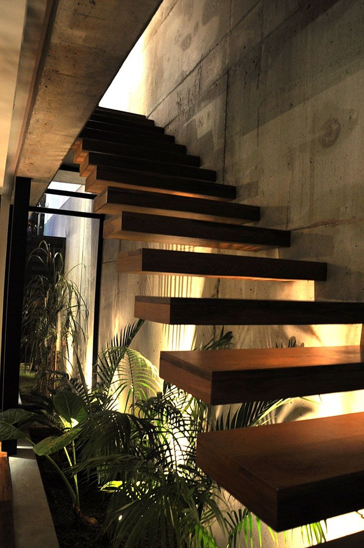 Exposed concrete interior walls with plants - LOVE