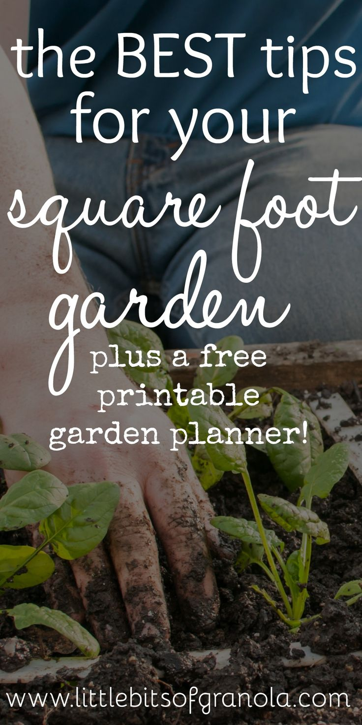 Can't wait to get my garden started! These tips will come in handy!