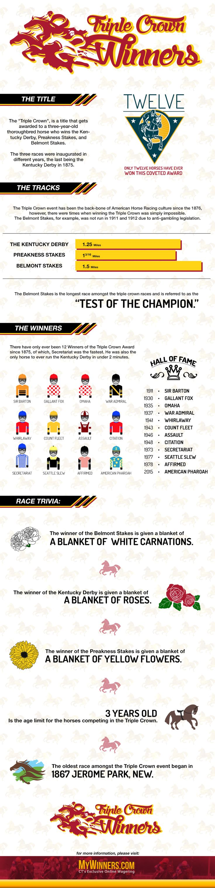 Horse racing infographic