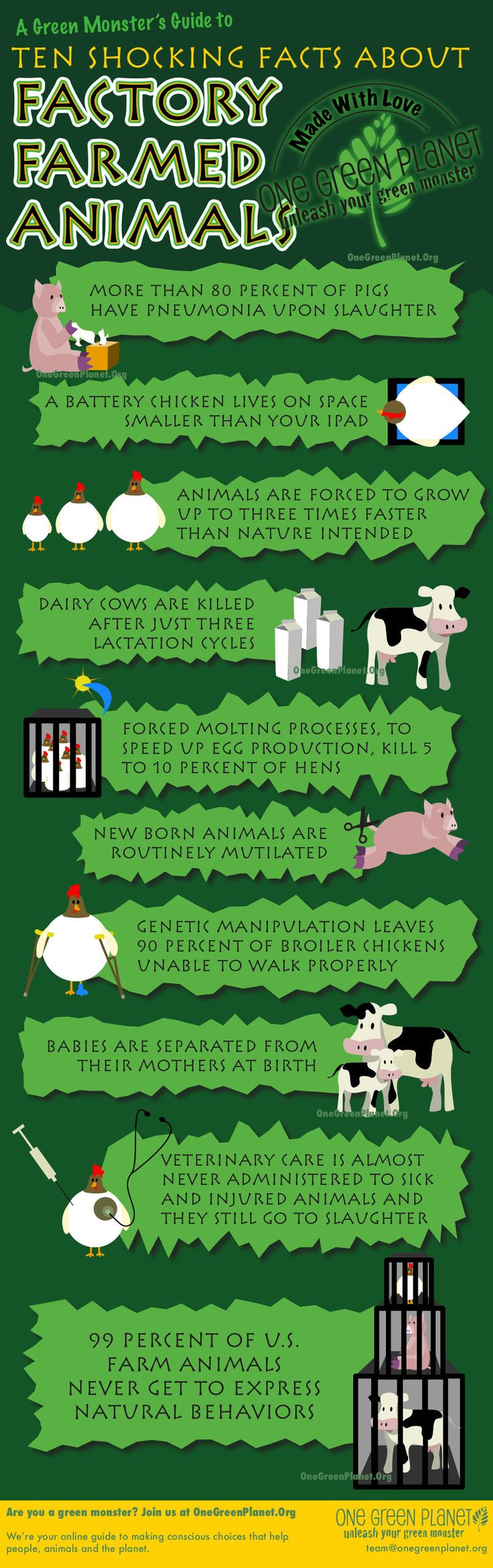 Shocking Facts About Factory Farmed Animals [INFOGRAPHIC].  Profit over living beings.