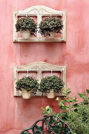 Decorando com plantas em vasos pequenos! - Jeito de Casa (Cor da parede - bonito!)