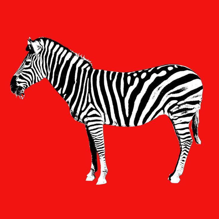 Quadro moderno pop-art stampa su tela casa camera bambini zebra arredamento