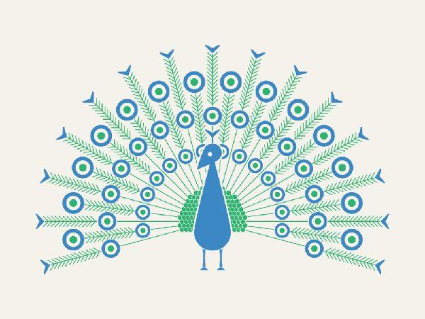 SEAN MORT - Peacock