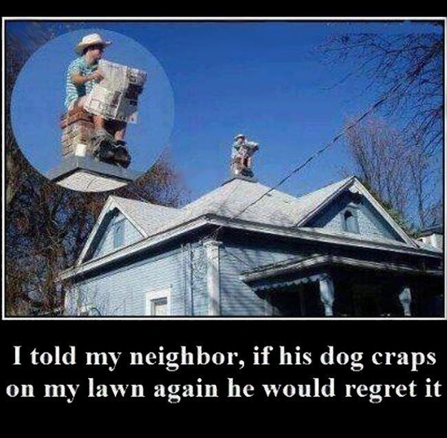 90 Funny Pictures For Today (#64)