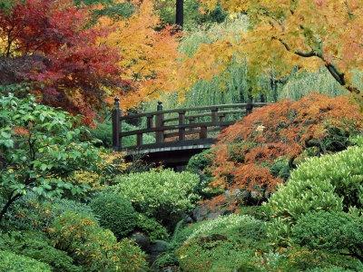 Japanese Gardens, Portland, Oregon, USAAutumn Scene, Crosses Stitches Pattern, The Gardens, Parks, Wallpapers, Japanese Gardens, Bridges, Japan Gardens, Portland Oregon