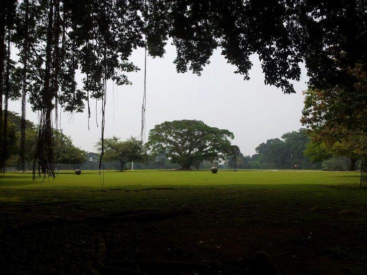 Istana Bogor yards