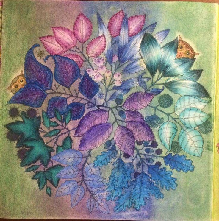 Mandala Owls Secret Garden De Corujas Jardim Secreto Johanna Basford Colored PencilsColoring BooksAdult
