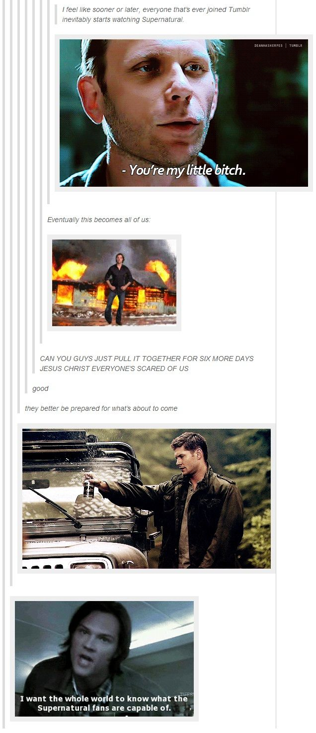 "(gif set) ""I feel like sooner or later, everyone that's ever joined Tumblr inevitably starts watching Supernatural."" [""Whatever you do, you will /always/ end up... here.]"