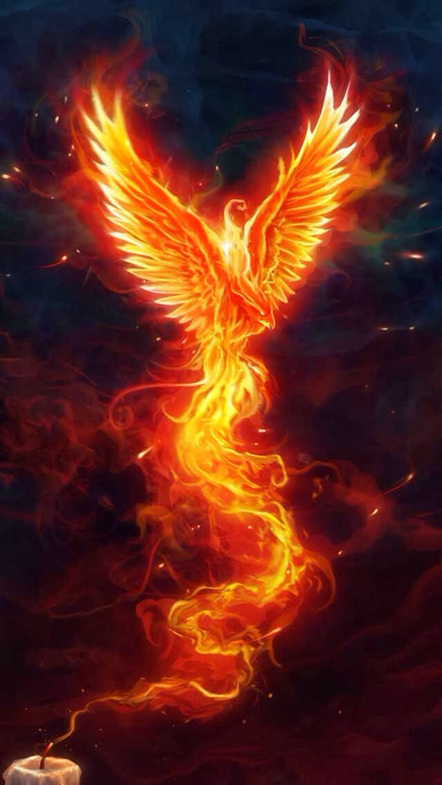 Cool Phoenix might be a cool sleeve with it rising from the ashes.