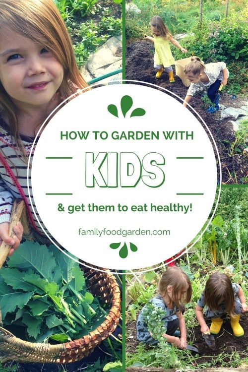kids gardening 101 activities for them to do while you garden