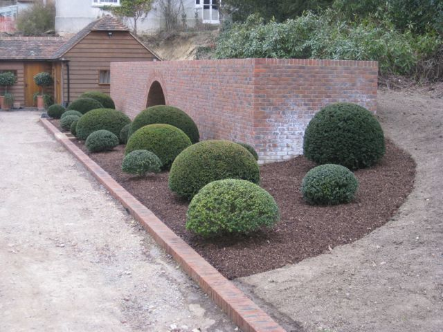 Planting at the side of a driveway