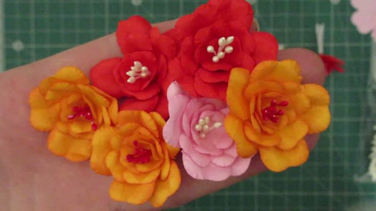 Kwiatki z pręcikami