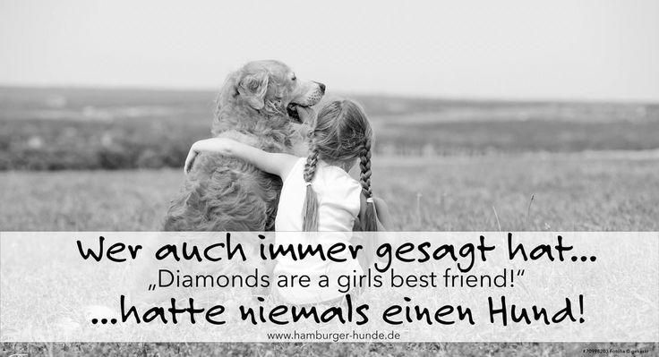 Wer auch immer gesagt hat...Diamonds are a girls best friend...hätte niemals einen Hund!