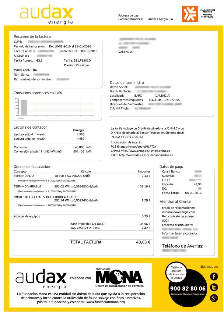 http://www.finanzasparamortales.es/enletragrande/visualizador.php?doc=45 En Letra Grande Factura Gas Energía Consumo @audaxenergia
