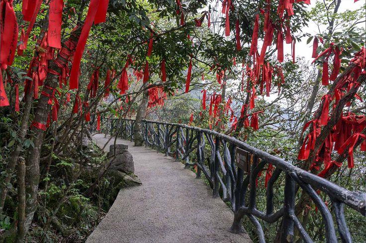 Bosques de deseos - La magia natural de China: enamórate de Tianmén y Zhangjiajie