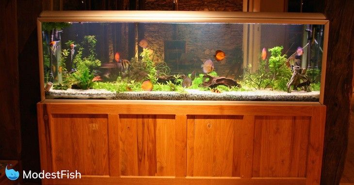 Ƶ·æ°´éš Coral ǏŠç'šæ°´æ—å·¥ç¨‹ Fish Tank Stand Fish Tank Tropical Fish Aquarium