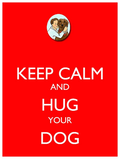 Hug your dog