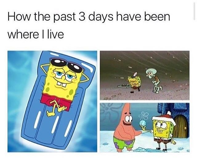 Yes! Our weather has been exactly like this